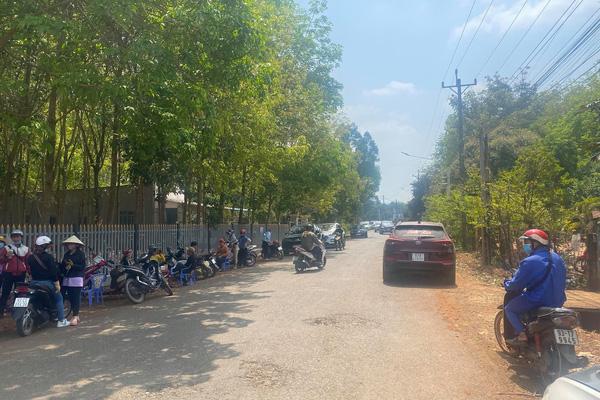 """Bình Phước làm sân bay: """"Cò đất"""" ùn ùn lên, thổi giá đất nông nghiệp tăng chóng mặt"""