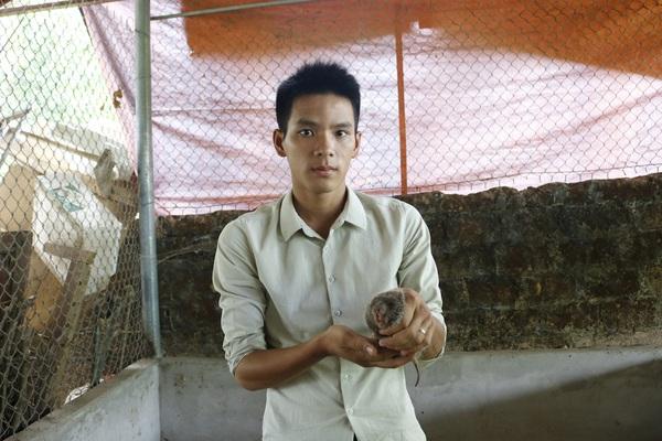 Phú Thọ: Mang con chỉ ăn tre nứa, nhìn giống chuột ở rừng về nuôi chơi chơi, ai ngờ lại đổi đời