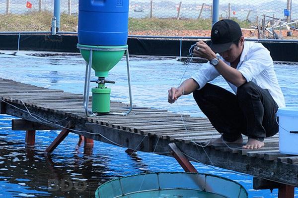 Bình Định: Nuôi tôm theo công nghệ gì mà có 1,5 sào ao nông dân bắt bán tới 6 tấn tôm, lãi ròng 300 triệu?