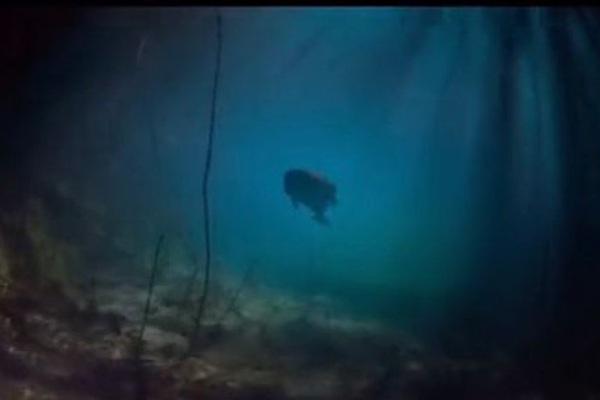 Nhà du hành thời gian tuyên bố bên dưới Đại Tây Dương ẩn chứa bí mật có thể thay đổi thế giới