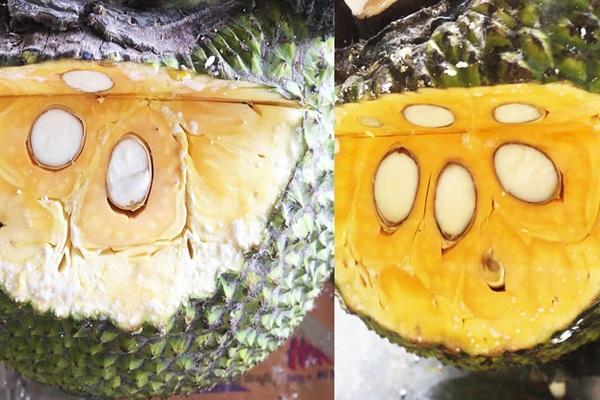 Giá mít Thái hôm nay 13/4: 10 trái mít Nhất mà vựa chỉ lựa 2 trái, 8 trái rớt mít Kem, giá tăng hay giảm?