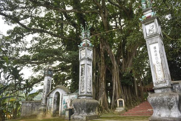 """Chiêm ngưỡng """"báu vật"""" xanh bên đền cổ thờ Tản Viên Sơn Thánh"""