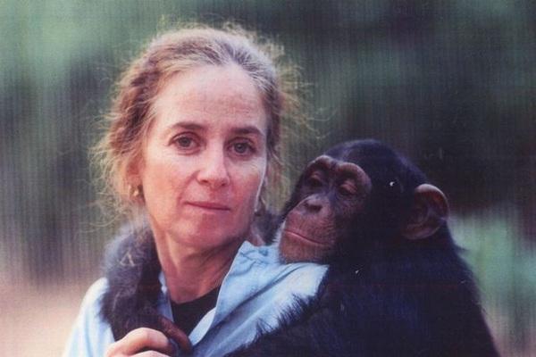 Lạ lùng người phụ nữ vào rừng sống kiểu tinh tinh trong 7 năm