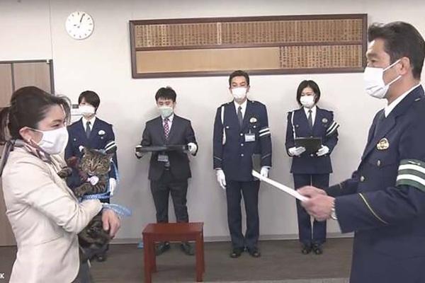 Nhật Bản: Kỳ lạ chú mèo được bổ nhiệm làm cảnh sát trưởng một ngày vì cứu sống người cao tuổi