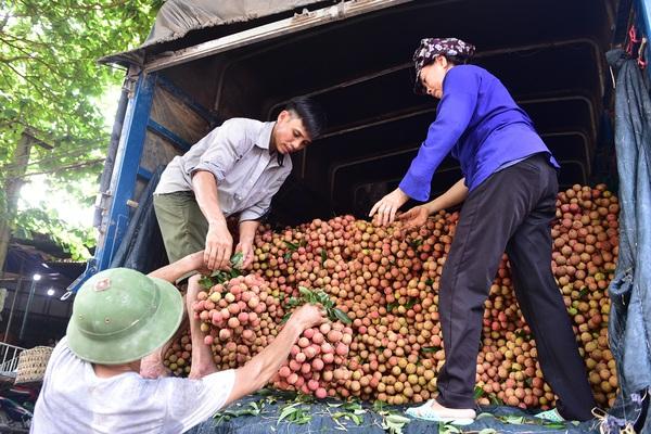 Lo dịch Covid-19 phức tạp, Bộ NNPTNT sẽ làm việc với Đại sứ Trung Quốc tại Việt Nam bàn tiêu thụ nông sản