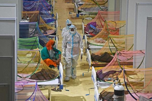 Ấn Độ gánh thêm tai họa vì bệnh dịch chết người khác ngoài Covid-19