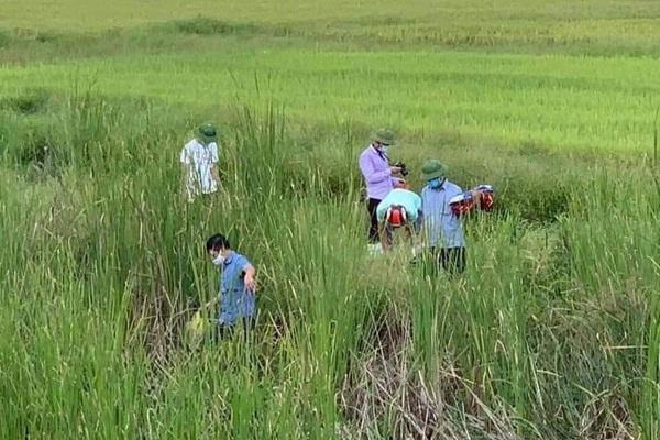 Vụ 2 mẹ con nằm trên đường tàu ở Nghệ An: Người mẹ bị khởi tố