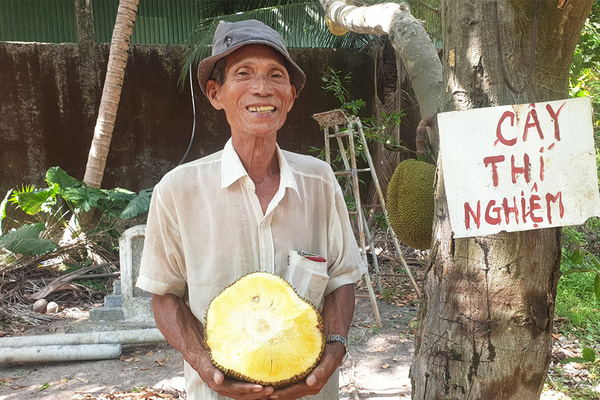 Giá mít Thái hôm nay 5/5: Mặc kệ giá mít lên hay xuống, ông nông dân này trồng mít không xơ đen, bán 40.000 đồng/kg