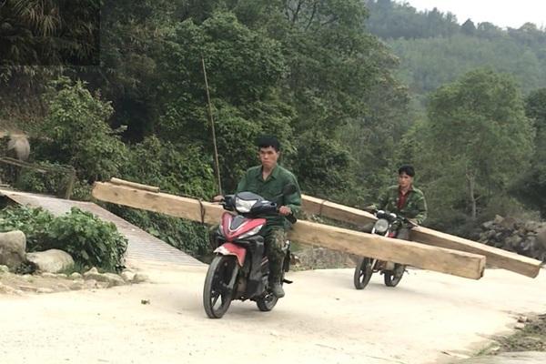 Trách nhiệm vụ phá rừng pơ mu Vườn quốc gia Hoàng Liên qua góc nhìn pháp lý