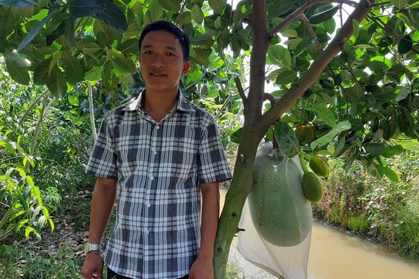 """An Giang: """"Liều"""" trồng mít Thái chung vườn với xoài, ai ngờ hái 30-40 tấn trái, anh trai trẻ đổi đời"""
