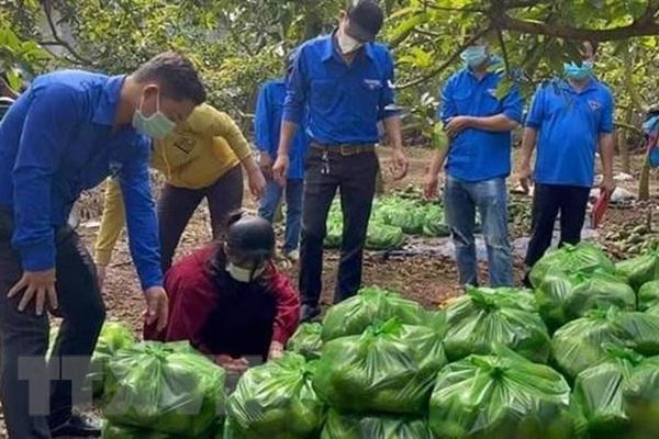 Bà Rịa-Vũng Tàu: Nông dân khốn đốn vì nông sản rớt giá kỷ lục