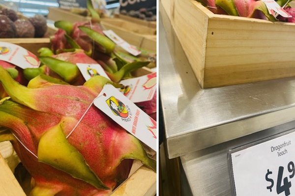 Loại trái cây trồng nhiều ở Bình Thuận, Long An có gì đặc biệt mà bán sang Úc giá tới 80.000 đồng/quả?