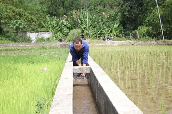 Thái Nguyên: Lạ và khó tin khi ở nơi này nông dân vừa phải đi mua nước về để...cấy lúa