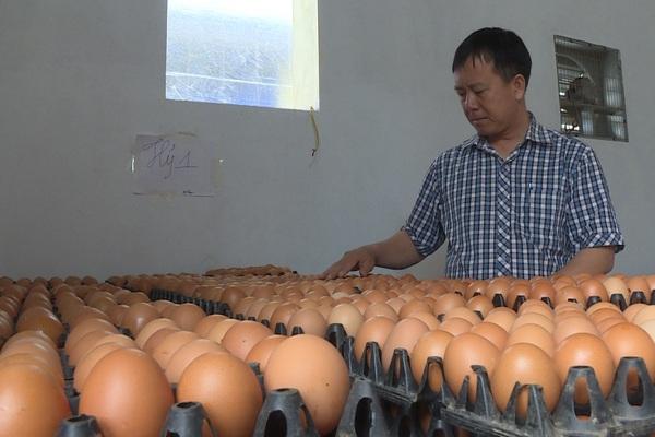 10 triệu dân Hà Nội cần bao nhiêu quả trứng, tấn thịt mỗi tháng, chợ dân sinh đóng cửa thì mua hàng ở đâu?