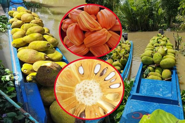 """Giá mít Thái hôm nay 3/8: 2 loại mít nào đang """"làm mưa làm gió"""" trên thị trường mua bán mít hiện nay?"""