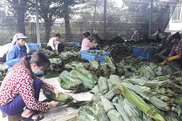 Chuyện hơi lạ ở Lai Châu: Lên rừng nhặt lá tre đem bán ra nước ngoài thu về mỗi tháng hàng ngàn đô la