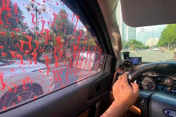 Hình ảnh hàng loạt xe ô tô bị tạt sơn ở Hà Nội