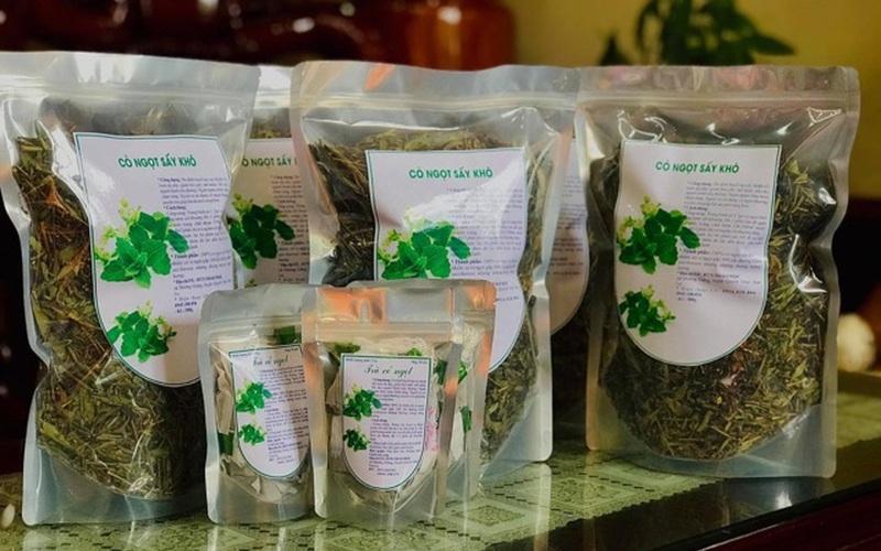 Xây dựng thương hiệu cỏ ngọt Quỳnh Nhai