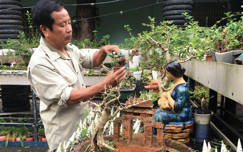 """Lão nông Khánh Hòa sở hữu bộ sưu tập 4.575 cây bonsai mini """"khủng"""" độc, lạ đạt kỷ lục thế giới"""