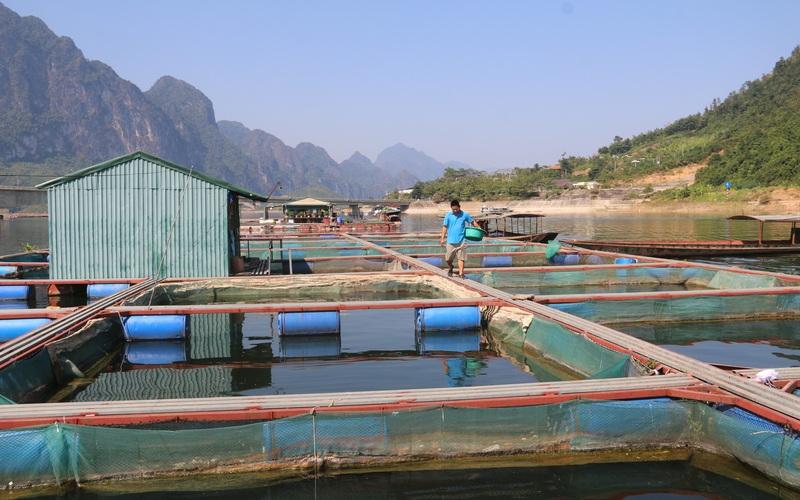 Quỳnh Nhai: Phát huy tiềm năng thế mạnh lòng hồ sông Đà