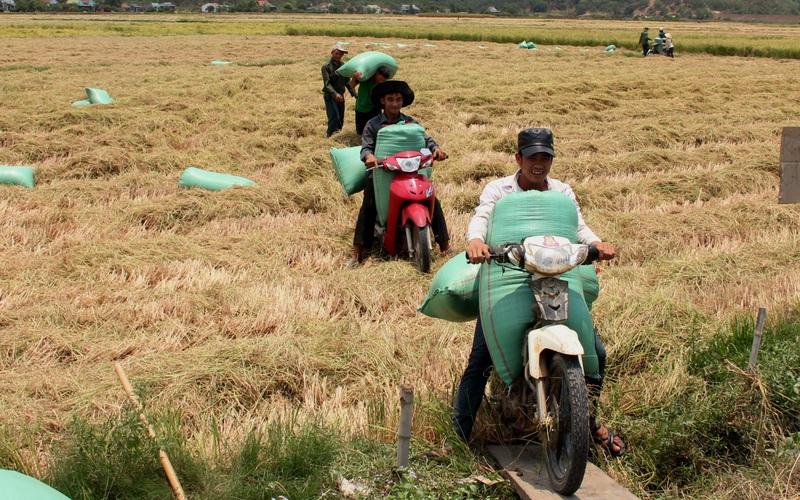 Giảm nghèo bền vững ở Lâm Đồng đạt nhiều kết quả khả quan