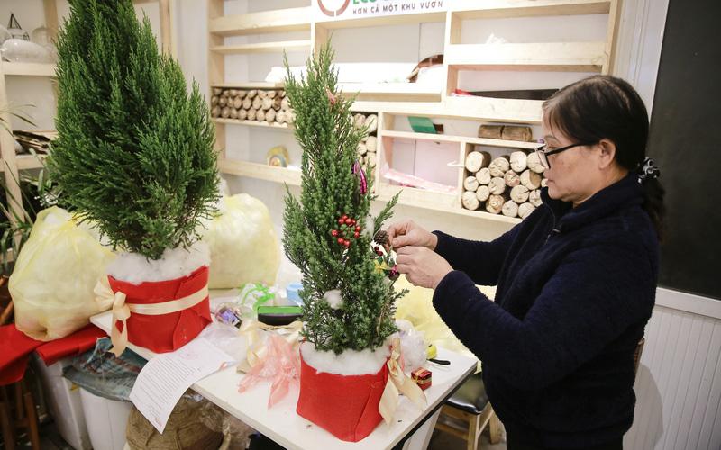 """Giá chỉ từ 100.000 đồng, """"bản sao"""" của cây thông thật đắt khách dịp Giáng sinh 2020"""