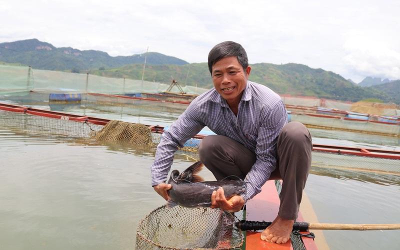 """Làm giàu từ nuôi cá lồng trên thắng cảnh """"Vịnh Hạ Long Tây Bắc"""""""
