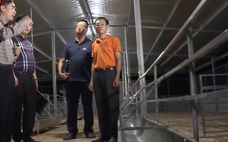 CLIP: Doanh nghiệp phất lên nhờ liên kết nuôi dê với trang trại dê DTH FRARMT