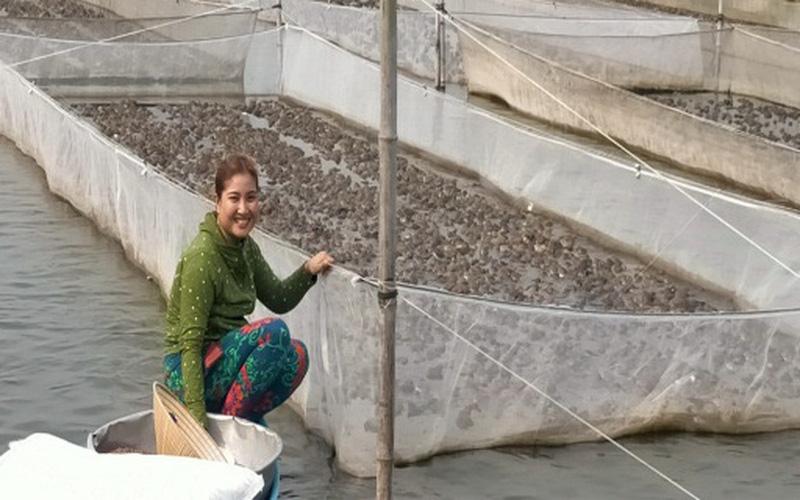 Long An: Độc đáo trên nuôi ếch nhảy bồm bộp, dưới nuôi cá tra, nông dân này thu hơn nửa tỷ/năm