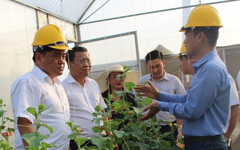 Đưa công nghệ vào ruộng vườn, nông dân Đồng Nai nhanh giàu