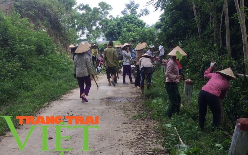 Hội Nông dân Tân Lạc: Nhiều hoạt động thiết thực trong xây dựng nông thôn mới