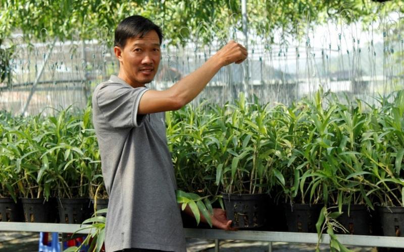 """Anh nông dân sở hữu vườn lan """"khủng"""" với giò lan đột biến Bạch tuyết 5 cánh trắng giá 1,5 tỷ"""