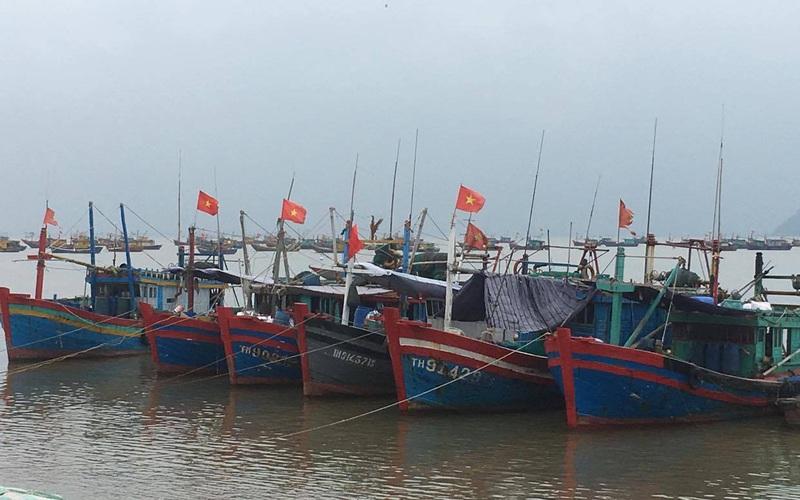 Thanh Hóa: Tránh bão số 2 Sinlaku, 7.062 tàu thuyền từ biển Đông đã vào bờ