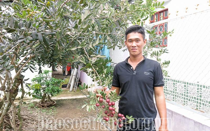 Sóc Trăng: Ghép nhãn lạ lên nhãn xuồng, trái màu tím, lá cũng tím bán giá 250.000 đồng/kg