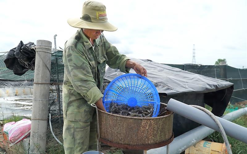 Tỉnh Bà Rịa-Vũng Tàu: Hàng nghìn tỷ đồng làm được mấy vùng nuôi tôm cá, trồng rau, nấm ứng dụng nông nghiệp công nghệ cao?