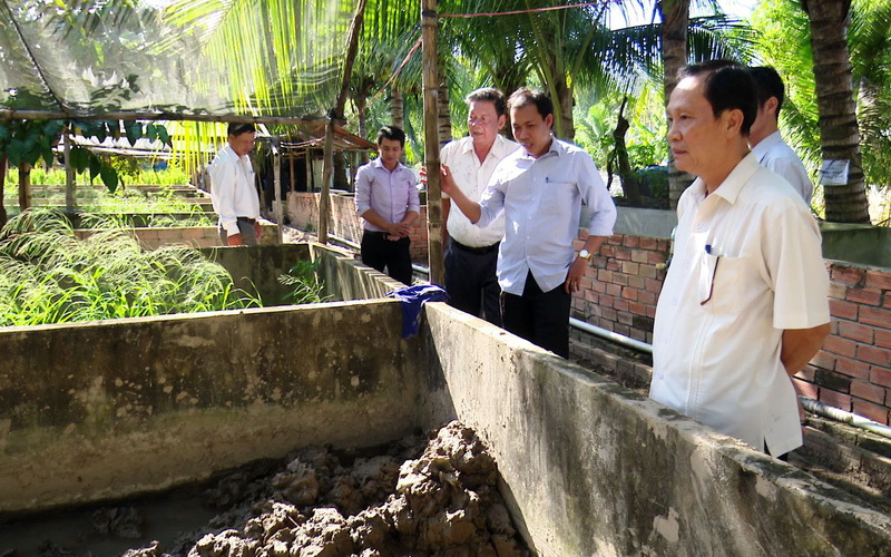 """Đồng Tháp: Nông dân rủ nhau """"chung 1 mái nhà"""" nuôi lươn đồng, chưa đầy 1 năm đã bán 15 tấn toàn con to"""