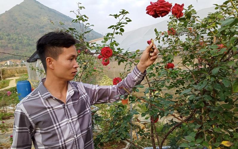 Bỏ túi 200 triệu đồng mỗi năm từ mô hình vườn hoa, cây cảnh