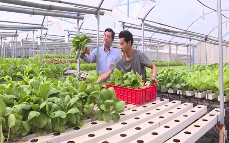 Nông dân tỷ phú Đồng Nai thời công nghệ 4.0