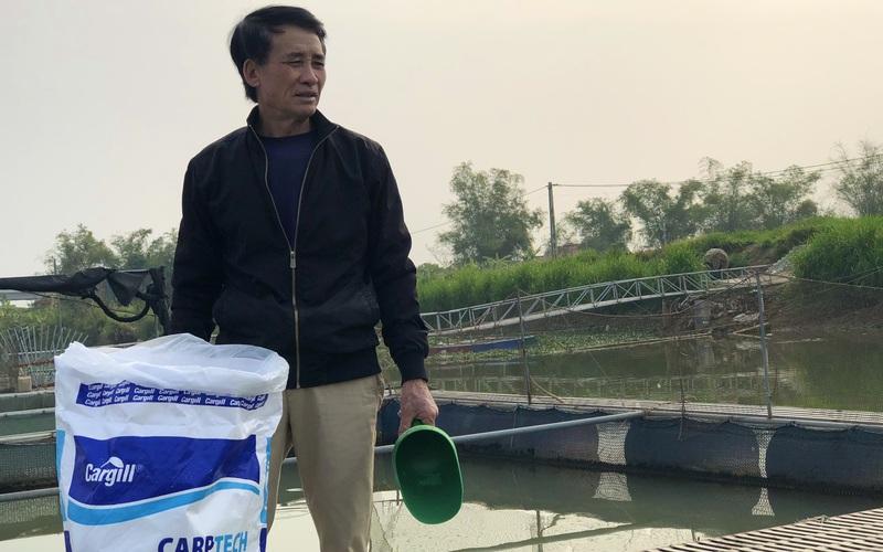Thái Bình: Do Covid-19, thương lái hủy đơn, hàng trăm tấn cá lồng không thể xuất bán