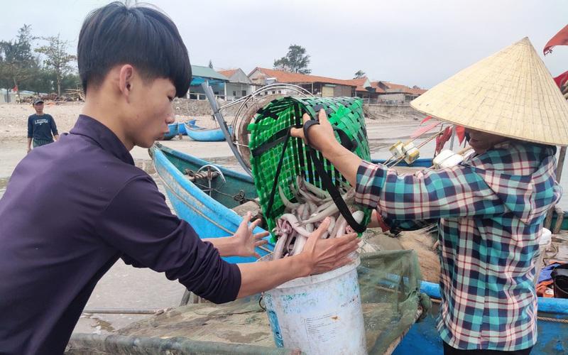"""Clip: Ngư dân Quỳnh Lưu (Nghệ An) chong đèn xúc """"lộc biển"""" ngày đầu năm Tân Sửu"""