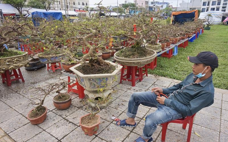 Đà Nẵng: Khung cảnh ảm đạm tại chợ hoa Xuân ngày giáp Tết