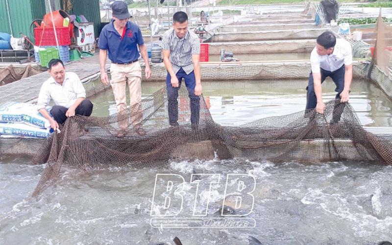 """Thái Bình: """"Vớt bạc"""" trên sông là nghề gì hễ cuối năm dân mà kéo lưới lên là có tiền to?"""