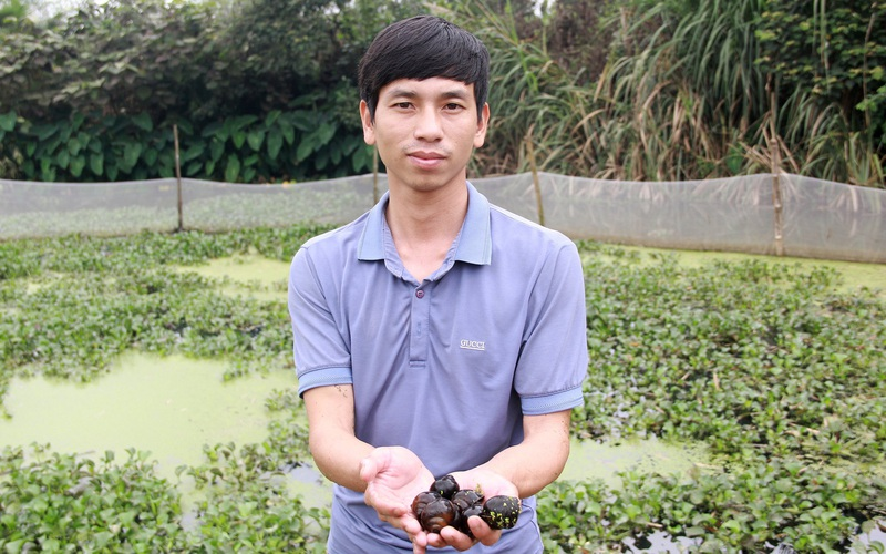 Hà Tĩnh: Nuôi con 4 tháng không cần ăn vẫn sống, một ông nông dân bỏ túi nửa tỷ đồng mỗi năm