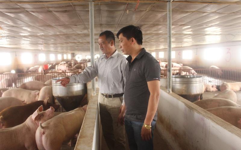 """Thái Bình: Tạo """"sân chơi"""" giúp nông dân làm giàu"""