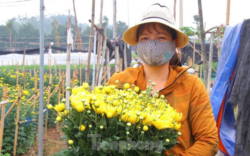 Giá hoa 'hồi sinh', dân làng Tây Tựu mừng như bắt được vàng