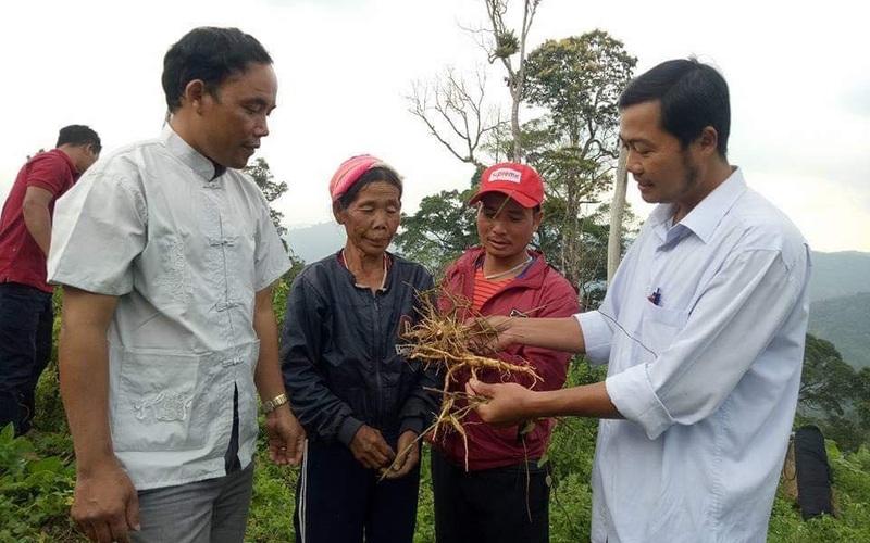 Quảng Nam: Huyện miền núi Tây Giang vượt khó khăn để nâng cao thu nhập cho người dân