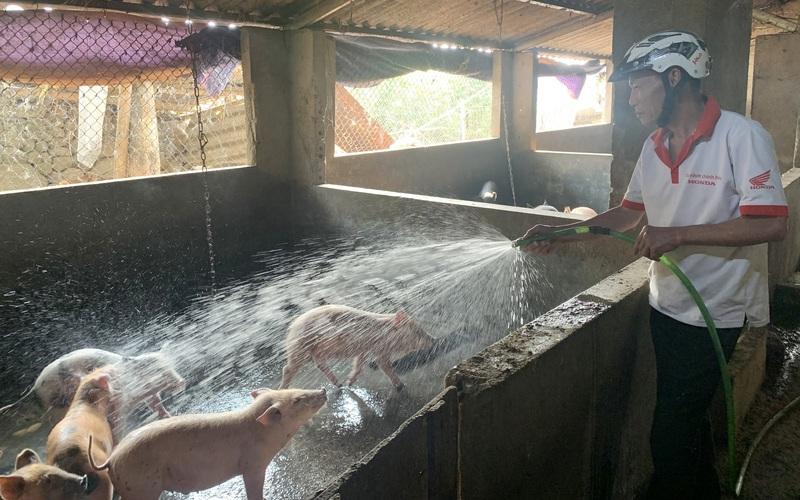Hội Nông dân Bình Lư: Cầm tay, chỉ việc giúp nhiều nông dân làm giàu