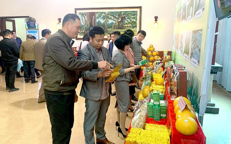 Tuyên Quang: Đưa sản phẩm OCOP vào du lịch, khách thích mê, nông dân có khoản thu lớn