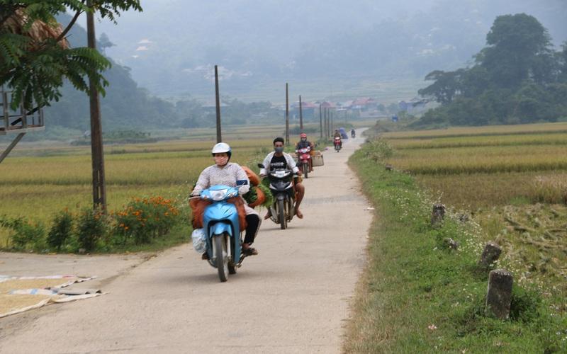 Hoà Bình: Nông thôn mới vùng cao Tân Lạc ngày càng khởi sắc