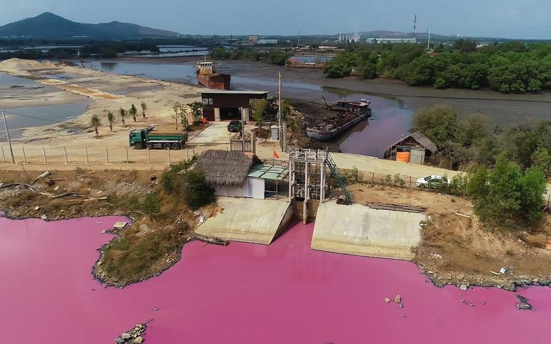 """Cận cảnh đầm nước màu hồng vì bị """"uống nước thải"""""""